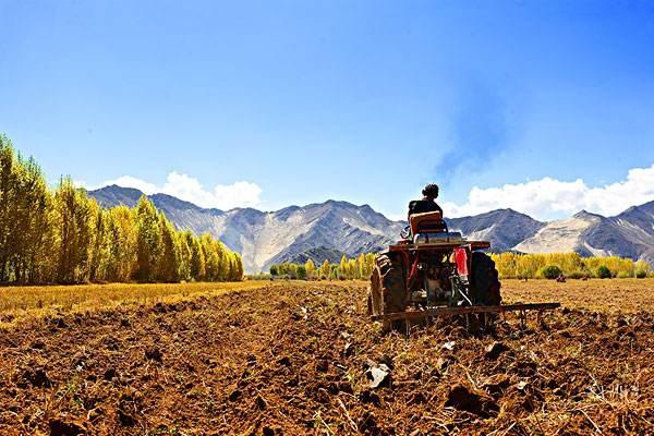 官方答复:切实提升西藏耕地质量的建议