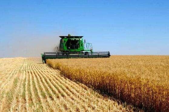 胡春华强调:大力促进家庭农场和农民合作社高质量发展