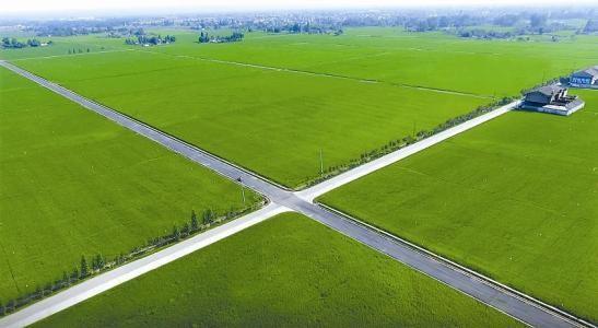 农业农村部:合理提高高标准农田建设标准
