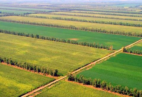 农业农村部:加快推进高标准农田建设