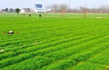 广西关于发布2018-2020年农机购置补贴产品信息表(2019年度第五批)的公告