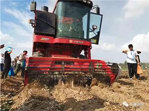 河南省推进低扬尘花生捡拾收获机应用,郑州中联备受认可