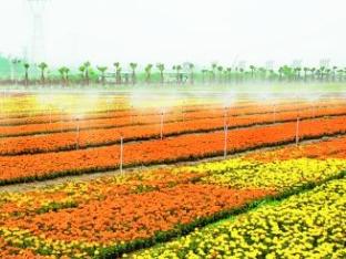 贵州省2019年新增30个省级高效农业示范园区
