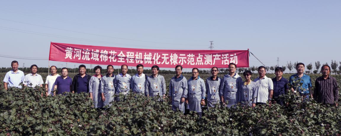 山东省棉花生产全程机械化示范基地大灾之年实现高产