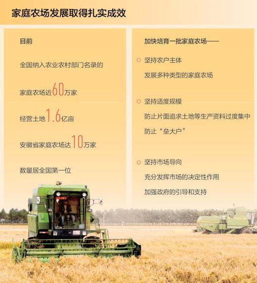 家庭农场 农业高质量发展生力军