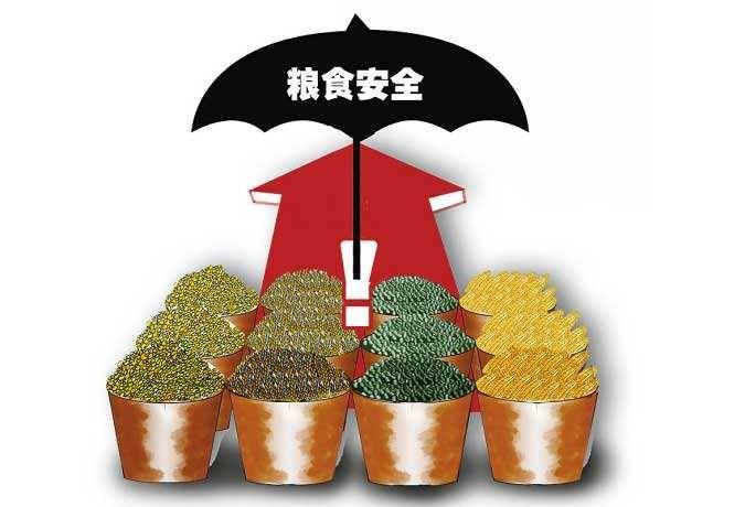 """粮库实吗、质量好吗、进口多吗——中国的粮食安全""""三问"""""""