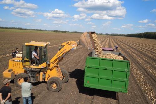 加快马铃薯全程机械化的对策措施