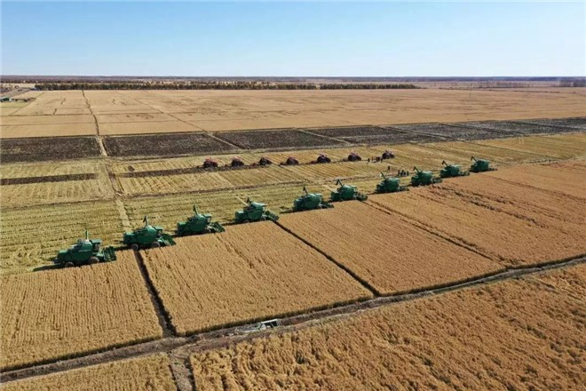 常发农装再次映入勤得利农场现代化大农业秋收壮美画面