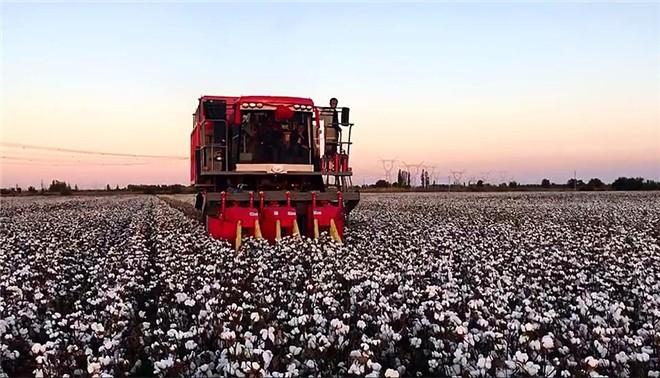 黄河流域棉花生产全程机械化推进活动成功举办