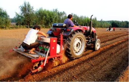 河南8000多万亩小麦播种基本结束