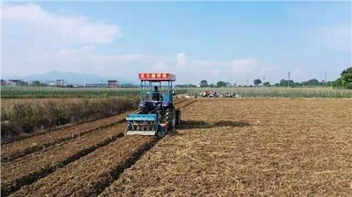 广西关于2019年农机购置融资贴息项目补助资金管理使用情况的通报