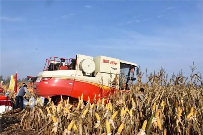 湖北省农机局关于印发《湖北省农机购置补贴机具核验工作要点》的通知