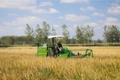 220万农民合作社在升级