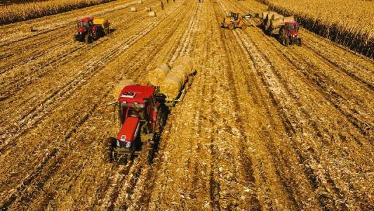 陕西2019年主要农作物秸秆机械化综合利用率达84.5%