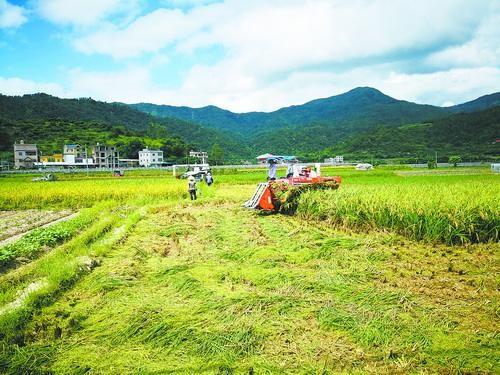 宁波市农机购置补贴实施进度(截至2019年11月30日)