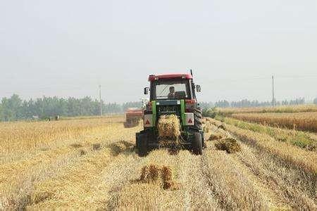 2820万元!甘肃省提前下达2020年中央财政农作物秸秆综合化利用资金