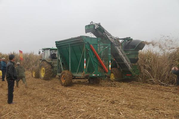 广西关于印发糖料蔗生产宽行距机械化种植技术模式指导意见的通知