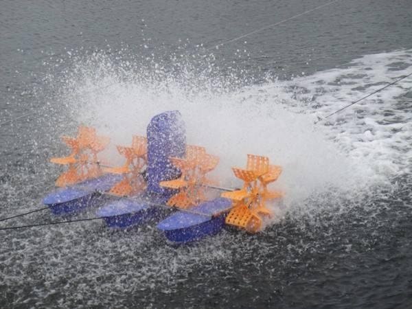 广东省关于撤销珠海市大力调水环保技术有限公司等2家企业生产的4种产品推广鉴定证书的通报