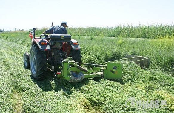 青岛市关于农机购置补贴机具增补品目及补贴额的通告