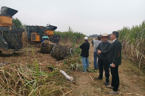 广西2019年第三批省级农机推广鉴定产品检测结果公布