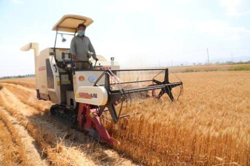山西省2019年农机推广鉴定产品证书有效期内监督检查结果通报