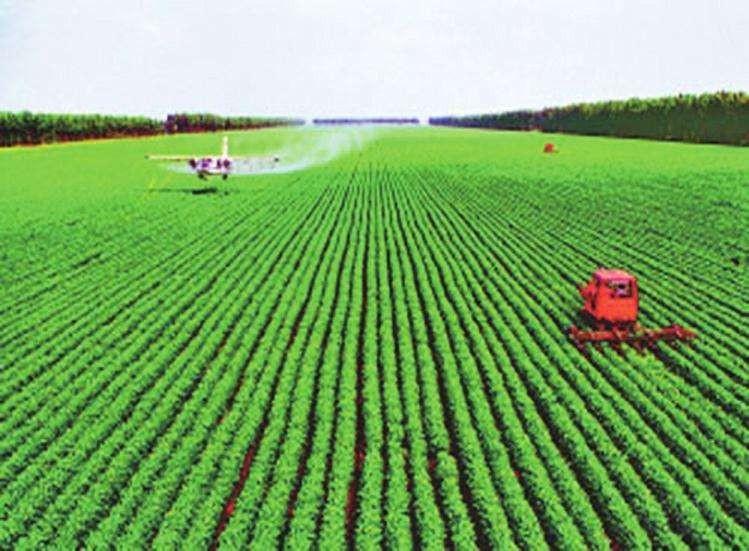 380万亩!安徽省下达2020年度高标准农田建设任务