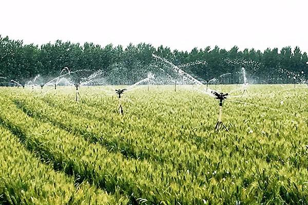 补贴8000万元!甘肃省2020年对旱作节水农业技术推广进行补贴