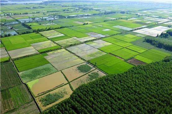 浙江省农田建设项目管理实施办法即将实施