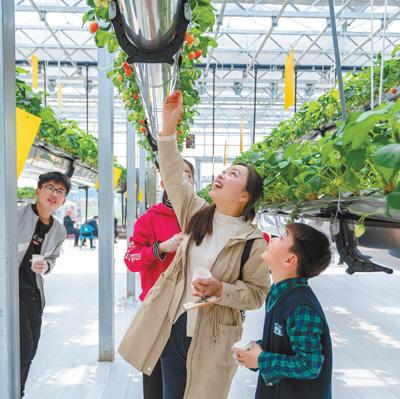 新型职业农民带头 农业发展增添新动能