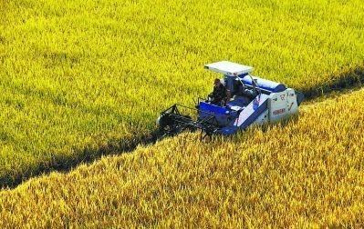 福建省关于农机购置补贴辅助管理系统 (2018-2020) 资金年份切换到2020年的通知