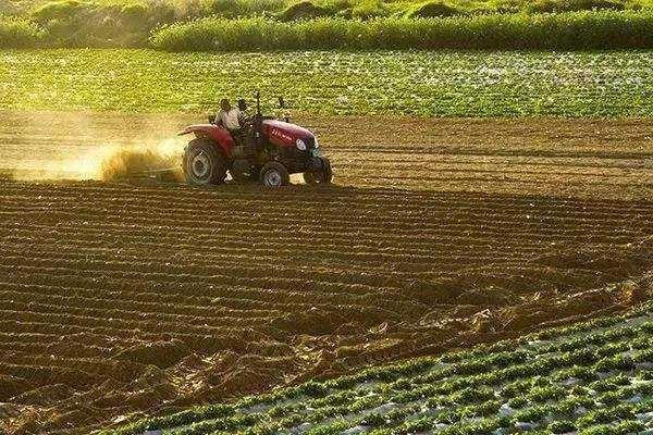 浙江省下达2020年省级农业农村高质量发展专项资金