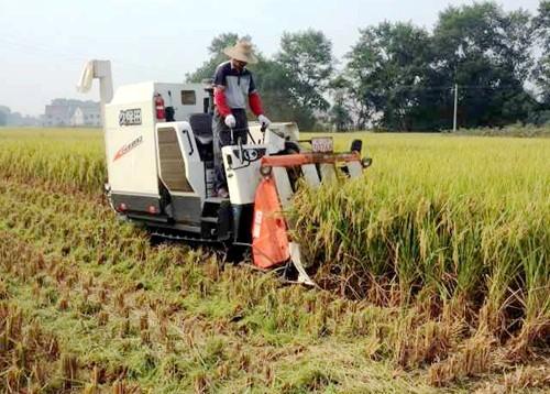 安徽省关于征求农业机械专项鉴定大纲管理办法(征求意见稿)意见的公告
