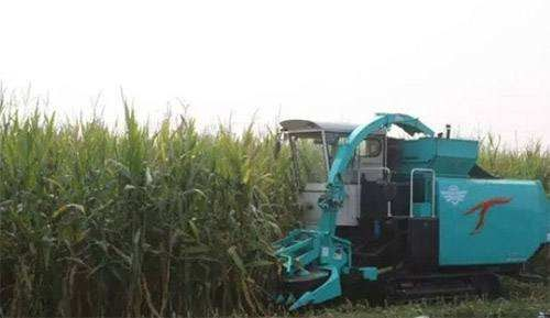 山东省加快实施农机装备研发创新项目