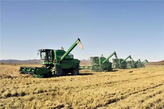 黑龍江:釋放綠色發展優勢 助推龍江農業高質量發展