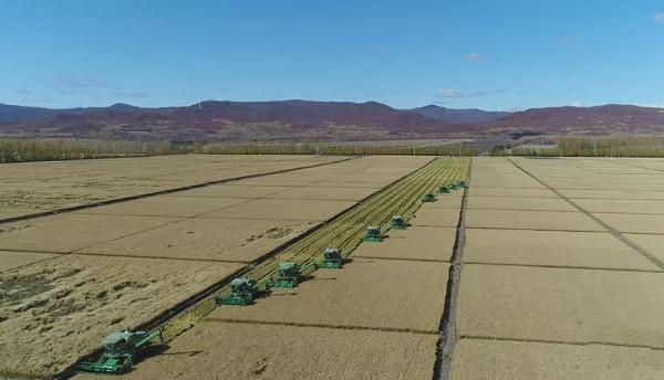 应对2020年农机行业新竞争,如何做出正确选择?
