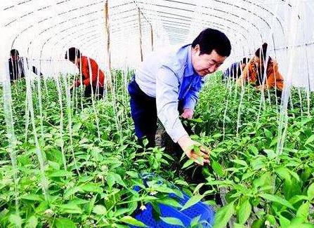 致全国农民合作社的倡议书