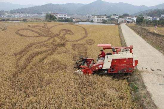 2020全国农业机械及零部件展览会将延期举办