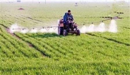 山东省2020年小麦春季管理技术意见