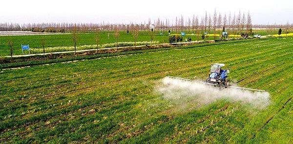 山西省2020年冬小麦春季田间管理意见