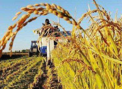 浙江:致全省农业经营主体的倡议书