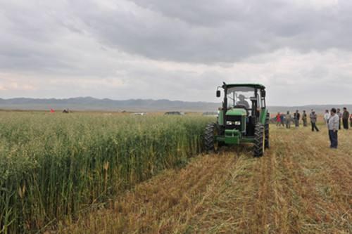 青海省关于正式启用2020年农机购置补贴辅助管理系统的通知