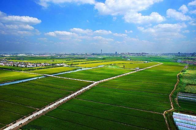 农业农村部关于印发《2020年种植业工作要点》的通知