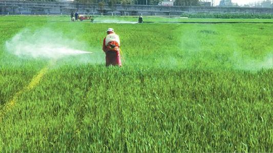 抓好农业稳产保供和农民增收
