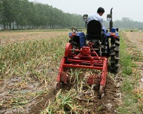 """他们把800项成果""""种""""到农民的田地里"""