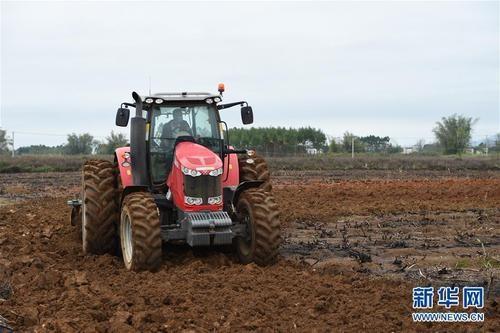 各地农村在抓疫情防控同时抢抓农时  稳产保供耕作忙