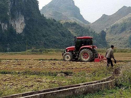 全力推进春季农业生产抓好农产品稳产保供 确保如期完成全年农业农村发展目标任务