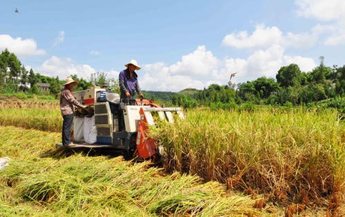 云南省关于印发《农业机械试验鉴定种类指南》的通知