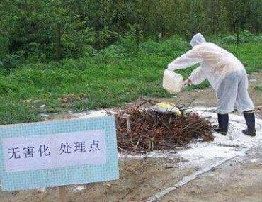 农财两部关于进一步加强病死畜禽无害化处理工作的通知