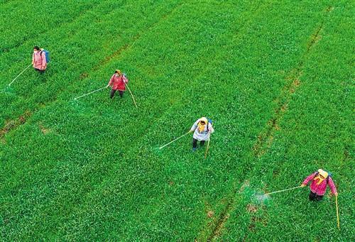 天津市農業農村委關于進一步做好農機購置補貼政策實施有關事項的通知