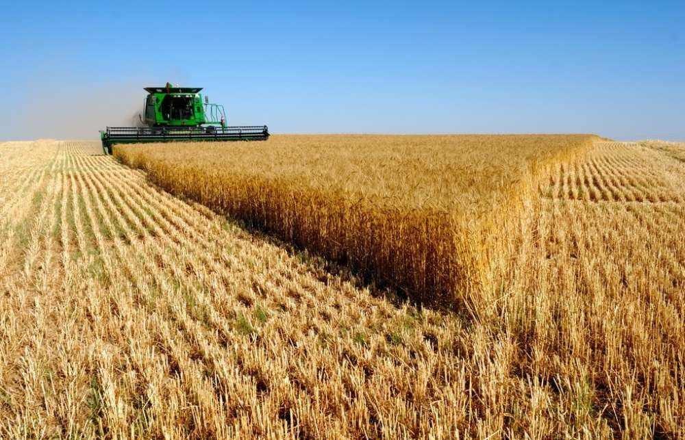 青海省2020年种植业工作要点